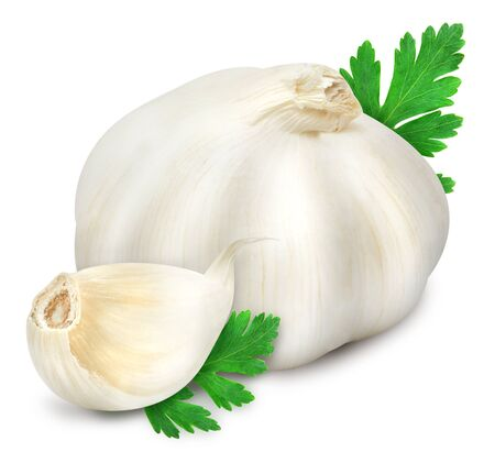 Head of garlic and clove with sprig of fresh green parsley isolated on white background. Design element for product label.