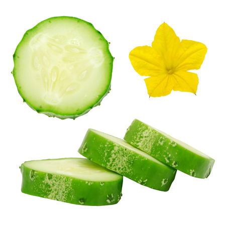 Set of fresh green ripe cucumber slices and flower isolated on white background. Design element for product label, catalog print, web use.