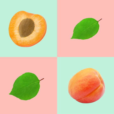Modern graphical food background with apricot. Bright colors. Stok Fotoğraf - 153204639
