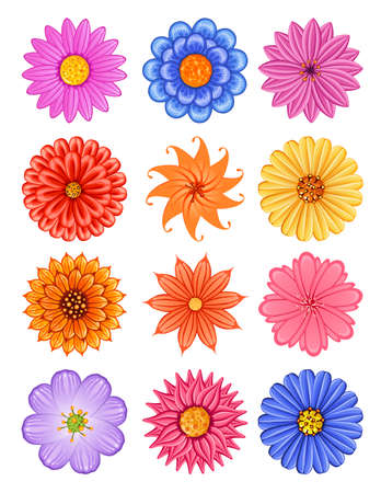 various colorful flower, suitable for various romantic design such as wallpaper, greeting card, and invitation Illustration
