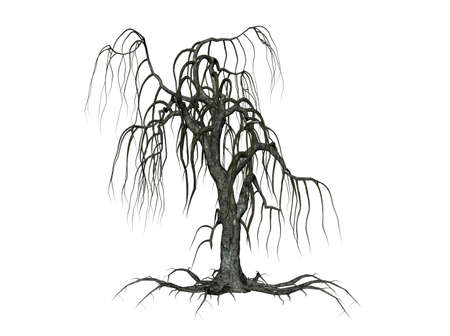 creepy: Illustration of a creepy tree, isolated agains white background Stock Photo