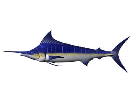 a marlin, rendered with Bryce 6