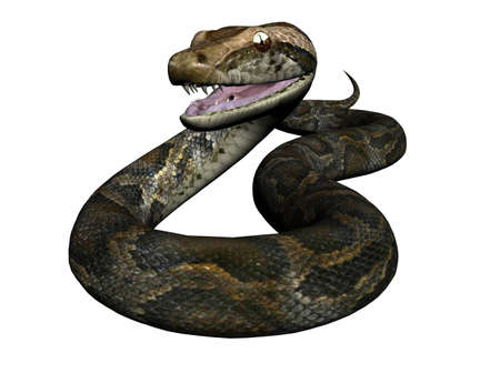 raytrace: 3D Illustration of a python Stock Photo