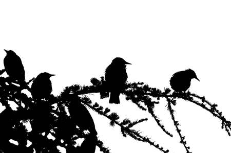 Silhouettes of some birds, sitting on a tree. Downsampled to two colors
