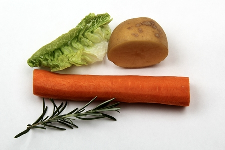 various raw and unprocessed vegetables on white background