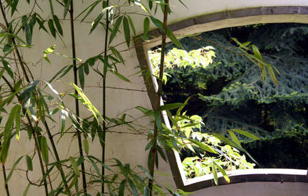 pavilon: Window and bamboo in a chinese garden Stock Photo