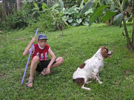 ornery: boy angry with the dog - in the caribbean rainforest   Stock Photo