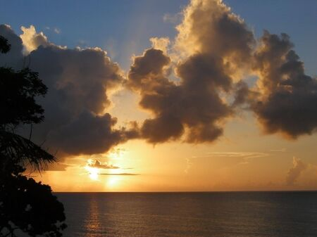 sunup: sunset over the caribbean sea with silhouettes of trees