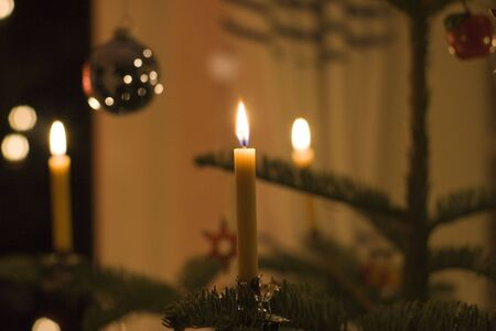 snugly: beeswax candles on a christmas tree -  lighting