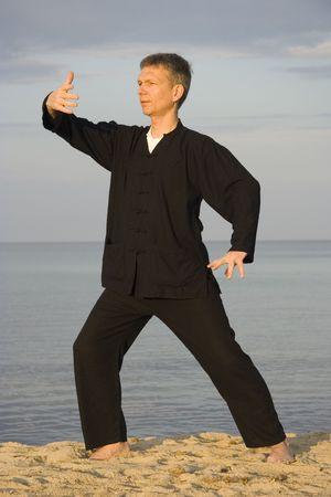 chi: tai chi - posture ward-off - art of self-defense