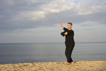 tai chi - posture fist under elbow - art of self-defense Stock Photo - 1906042