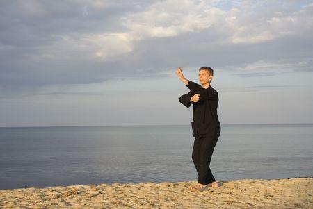 tai chi - posture fist under elbow - art of self-defense