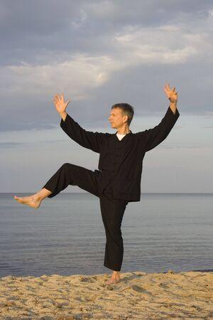 tai chi - posture kick with right heel - art of self-defense photo