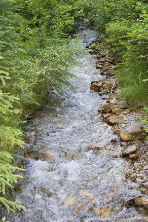 straight creek in the mountains - with a lot of brown stones