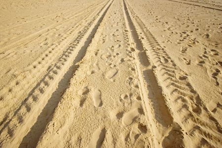 tracks on a sandy beach - in warm sunlight -  photo