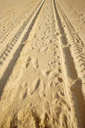 tracks on a sandy beach - in warm sunlight - Stock Photo - 1858521