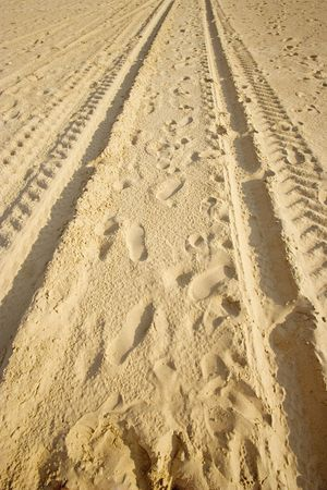 skidmarks: tracks on a sandy beach - in warm sunlight -
