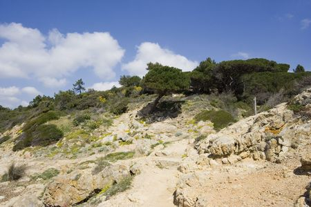 littoral: hiking trail on the french riviera - called sentier du littoral in france