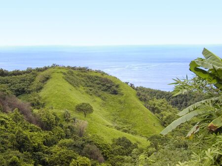 panoramics: Green Hills and Landscape on the Island Tobago - west indies Stock Photo