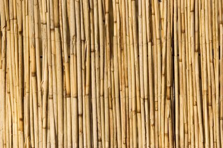 wooden partition: bamboo screen