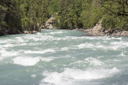fraser river: Fraser River spilling over Rearguard Falls - Rearguard Falls Provincial Park, Canadian Rockies, British Columbia
