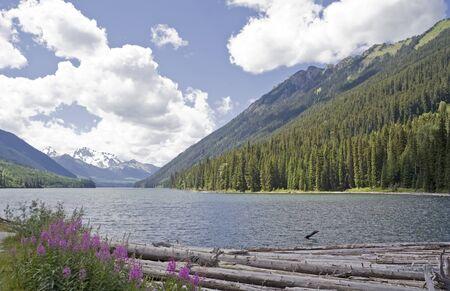 provincial: Duffey Lake and Cayoosh Creek with dead Trees – Duffey Lake Provincial Park, Coast Mountains, British Columbia, Canada