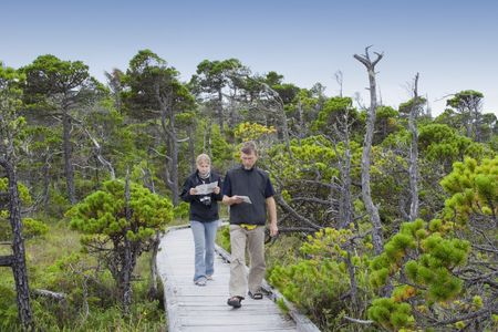 Family on Boardwalk studying Plants in a Bog - Pacific Rim National Park, Vancouver Island, British Columbia, Canada photo