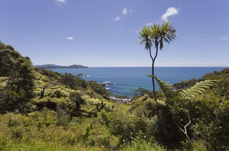 View over Pacific Ocean - Panorama near Old Russell Road, Northland, North Island, New Zealand
