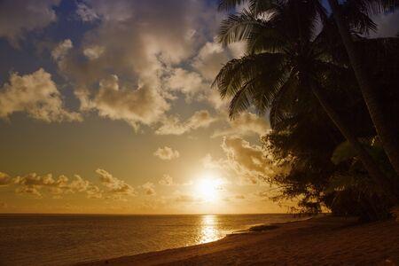 Tropical Beach with Coco Palms at Sunset - Rarotonga, Cook Islands, Polynesia photo