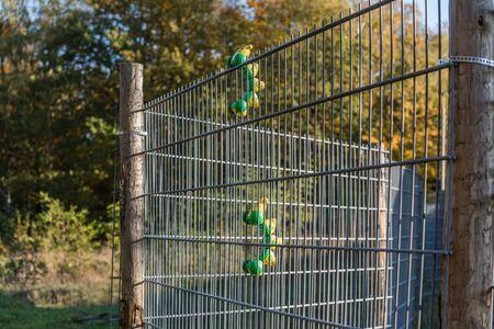 green and yellow toy caterpillar climbing a metal gate