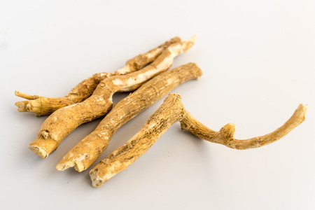 Ashwagandha ( Indian Ginseng, Aswaganda) Isolated on White Background