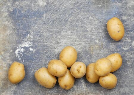 scarred: Overhead, flat lay photo of several Yukon Gold potatoes scattered across the bottom of a stained and scarred steel background. Copy space available in horizontal composition. Stock Photo
