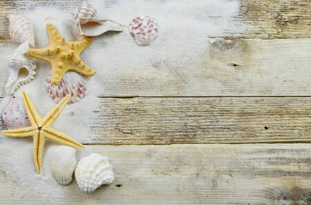 Black And White Image Of Seashells Starfish On A Rustic Wooden