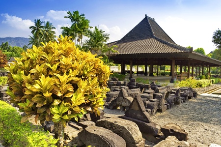 Outdoor garden in Prambana temple site, Indonesia