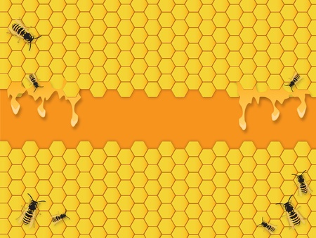Yellow Bees hive hexagon background with honey Vector