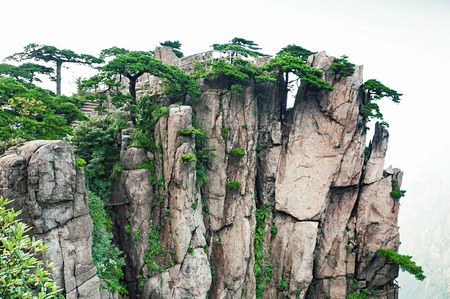 Huangshan mountain peaks with trees in China, Sacred Yellow Mountain