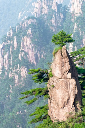 Huangshan mountain peak with trees on top, china