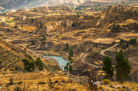 Colca Canyon view from hiking path in Chivay, near Arequipa, Peru Stock Photo