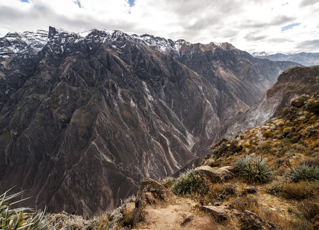 Colca Canyon view from hiking path in Chivay, near Arequipa, Peru photo