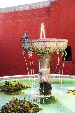 medioeval: Santa Catalina Monastery in Arequipa fountain with a pidgeon on it, Peru