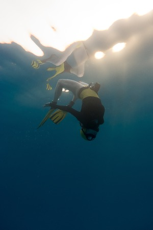 A young girl free diving in the pacific ocean