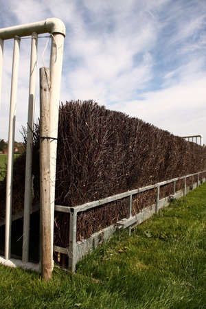 stakes: Fence on a racecourse