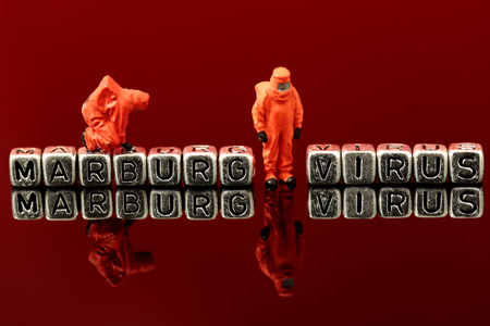 Marburg virus on beads with miniature scale model chemical team