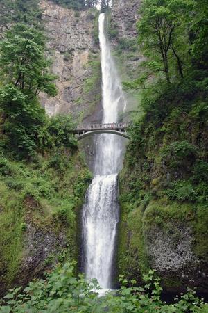 Multnomah Falls OR.  photo