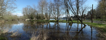 A panoramic pond in Fairview OR.