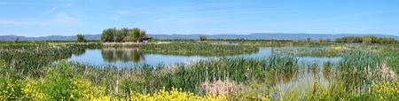 klamath: National wildlife refuge & marshes, Klamath Falls Oregon.