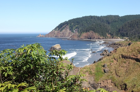 northwest: Oregon coast pacific northwest cliffs & beaches.  Stock Photo
