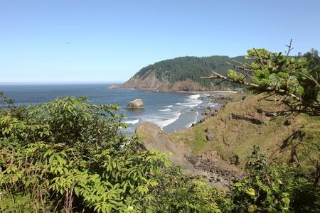 Oregon coast pacific northwest cliffs & beaches.  Stock Photo - 10347332
