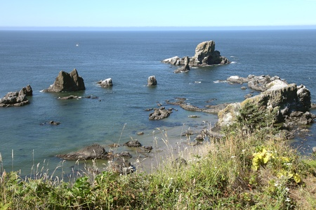 Oregon coast pacific northwest cliffs & beaches. Stock Photo - 10347336