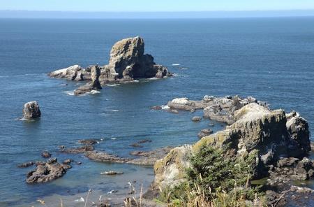 Oregon coast pacific northwest cliffs & beaches.  版權商用圖片